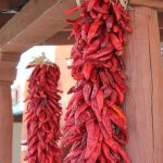 New Mexico Chili Peppers