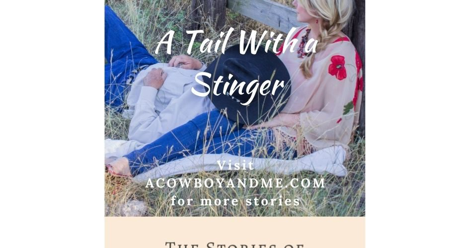 A Tail With a Stinger (part 1)